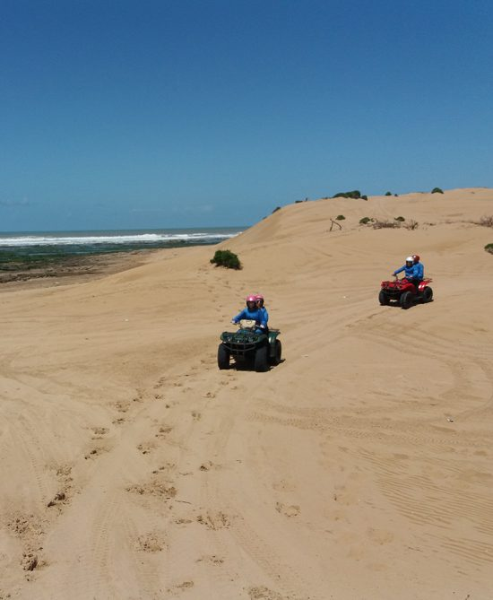Sidi Kaouki and Sidi M'barek day with meal 2 Persons / 1 Quad
